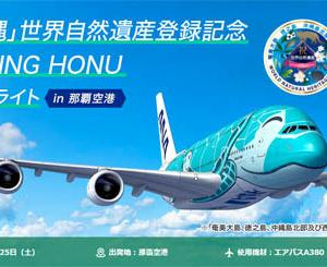 ANAは、超大型機エアバスA380型機「FLYING HONU」での沖縄・奄美周遊フライトを開催!