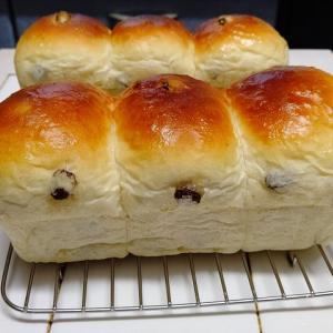 レーズン入りの食パン
