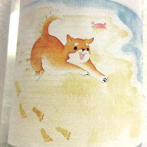 柴犬ラベルの芋焼酎「海柴(うみしば)」1.8L発売♪
