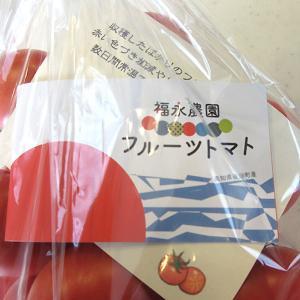 GWとトマト大福♪