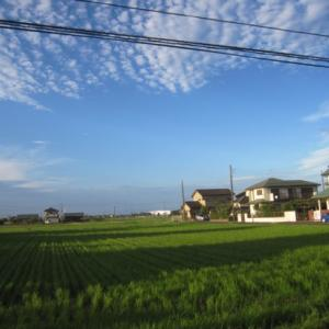 ι(´Д`υ)アツィー日が終わり~空は秋