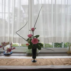 窓辺の花~トクサ、バラ