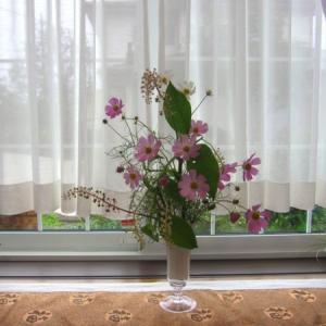 窓辺の花~コスモス、ヤマゴボウ