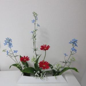 お稽古のお花~ならぶかたち・デリュフニュウム・ガーベラ・青ドラセナ