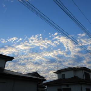 朝の空~良い天気