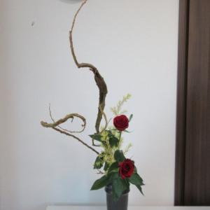 お稽古のお花~石化柳