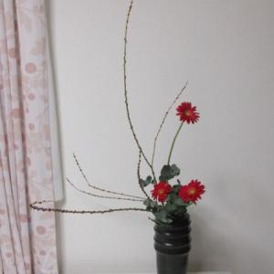 お稽古のお花~小豆柳で傾斜型・瓶花