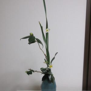 また小品花です~椿・水仙