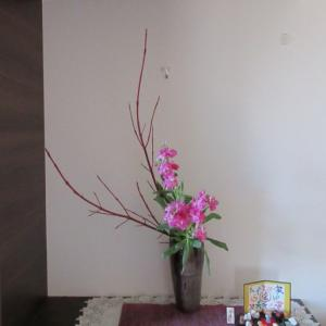 玄関のお花~頂いたスットクで
