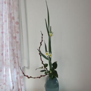 お稽古のお花~水仙を皹寧窯に