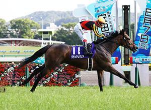 この時期は牝馬が強い…。~安田記念 2020~