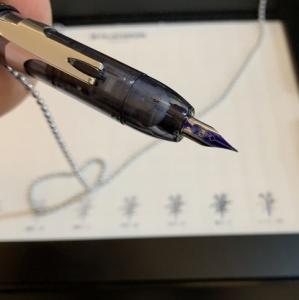 ノック式万年筆。