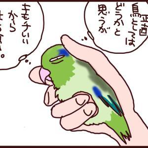 小鳥の「複雑な」キモチ