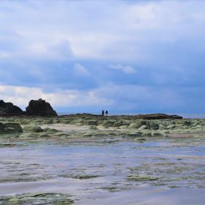青森県深浦町 冬の千畳敷海岸と加藤食堂の五目ラーメン。