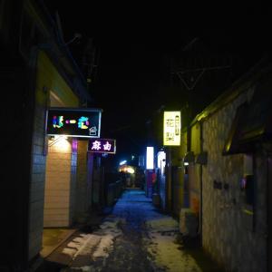 青森県むつ市 本州最北の歓楽街田名部。居酒屋あじさいで一人飲み。