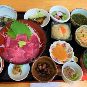 青森県深浦町 北金ケ沢の大イチョウと、セイリングの深浦マグロ丼御膳。