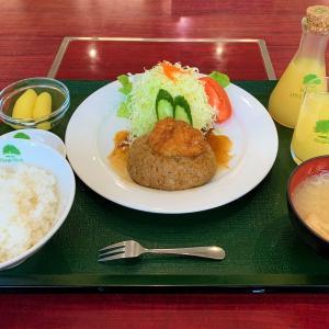 青森県板柳町 温泉に、りんごジュースに、ハンバーグに、ふるさとセンターはとっても楽しい。