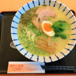 青森県むつ市 むつ市役所内にある大人気の食堂で、新メニューの鶏白湯ラーメンを食べてみた【ぽわーる亭】