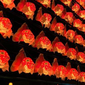 青森県青森市 気が付けば行列ができる大人気店で、いかづくしと鯛づくし定食を食べて来た【蔵八】