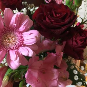 セキチクはママさんの花