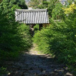 初秋の奈良 山の辺の道へ