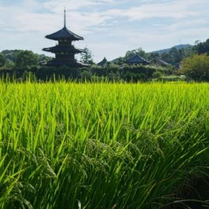 日本最古の三重塔 斑鳩三塔と秋の空