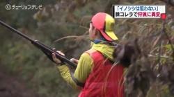 狩猟解禁 豚コレラで猟に異変(チューリップテレビ 11月15日 18時22分)