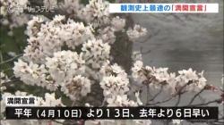 富山で観測史上最も早い「満開宣言」(チューリップテレビ 令和3年3月28日 11時57分)
