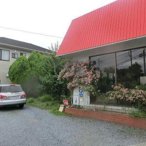 久々に『カフェ よくなるよくなる (cafe 49²) 』さんでつかの間のタイムスリップ @ 茨城県水戸市河和田