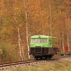 紅葉の森林鉄道(2018年)