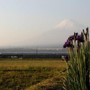 富士山(2010年)