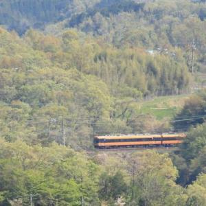 新緑と電車(2020年)
