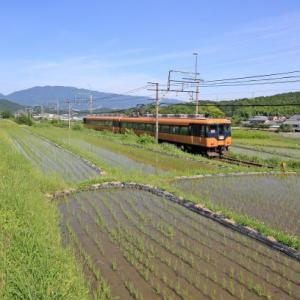田植後の風景(2018年)