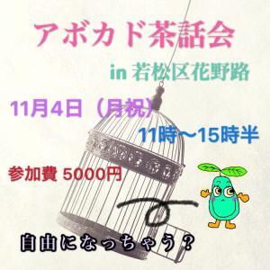 11/4(月祝)アボカド茶話会♪