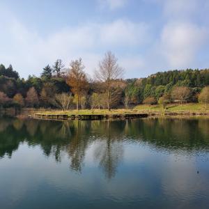 笠間湖(飯田ダム)腹パンの魚居た~( ˊᵕˋ ;)