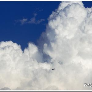 AIRLINERS WINGS 53