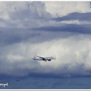 AIRLINERS WINGS 54