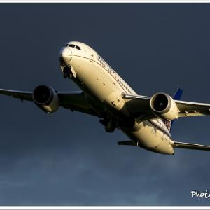 AIRLINERS WINGS 65