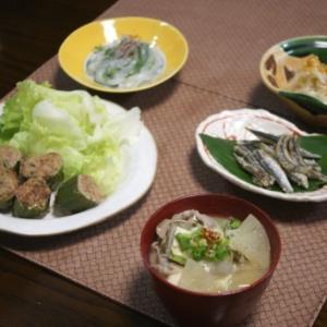 ピーマン肉詰め・豚汁・小鰯唐揚げ・剣先刺身