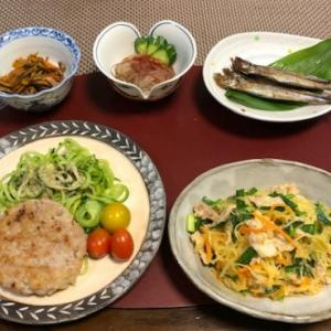 剣先バーグ・素麺南瓜のビーフン風☆今朝の収穫 with CHICA