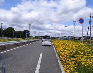 茨城の樹海ライン!グリーンふるさとライン~ビーフライン