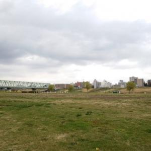 取手の利根川緑地公園で遊ぶ!