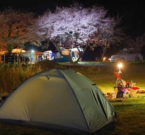 2021花見キャンプに行ってた。