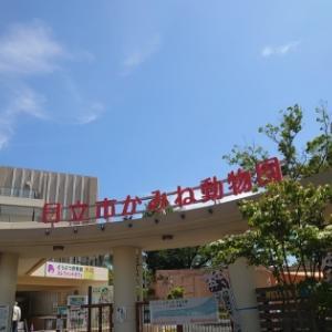 日立かみね公園は意外と楽しい茨城のテーマパーク!