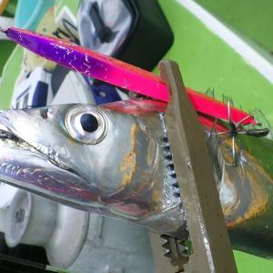 釣行 太刀魚17[ 東京湾 ] 冬の浅場のタチウオジギング@渡辺釣船店