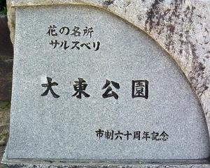 新種の桜 今津紅寒桜  Cerasus 'Imazubenikanzakura'
