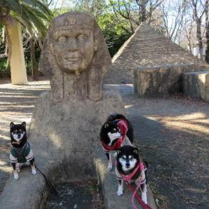 エジプト旅行?