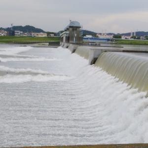 多摩川チャリ