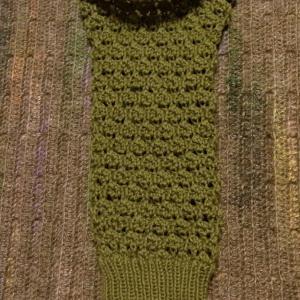 デイジーのラグランスリーブプルもう片袖1玉編めました