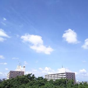\(^o^)/ 8月朝の雲